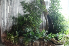 Plantscaping with Log Water Feature
