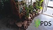 Plantscaping1